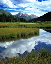 mountain marsh