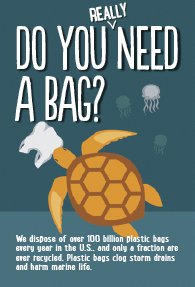Do you really need a bag?