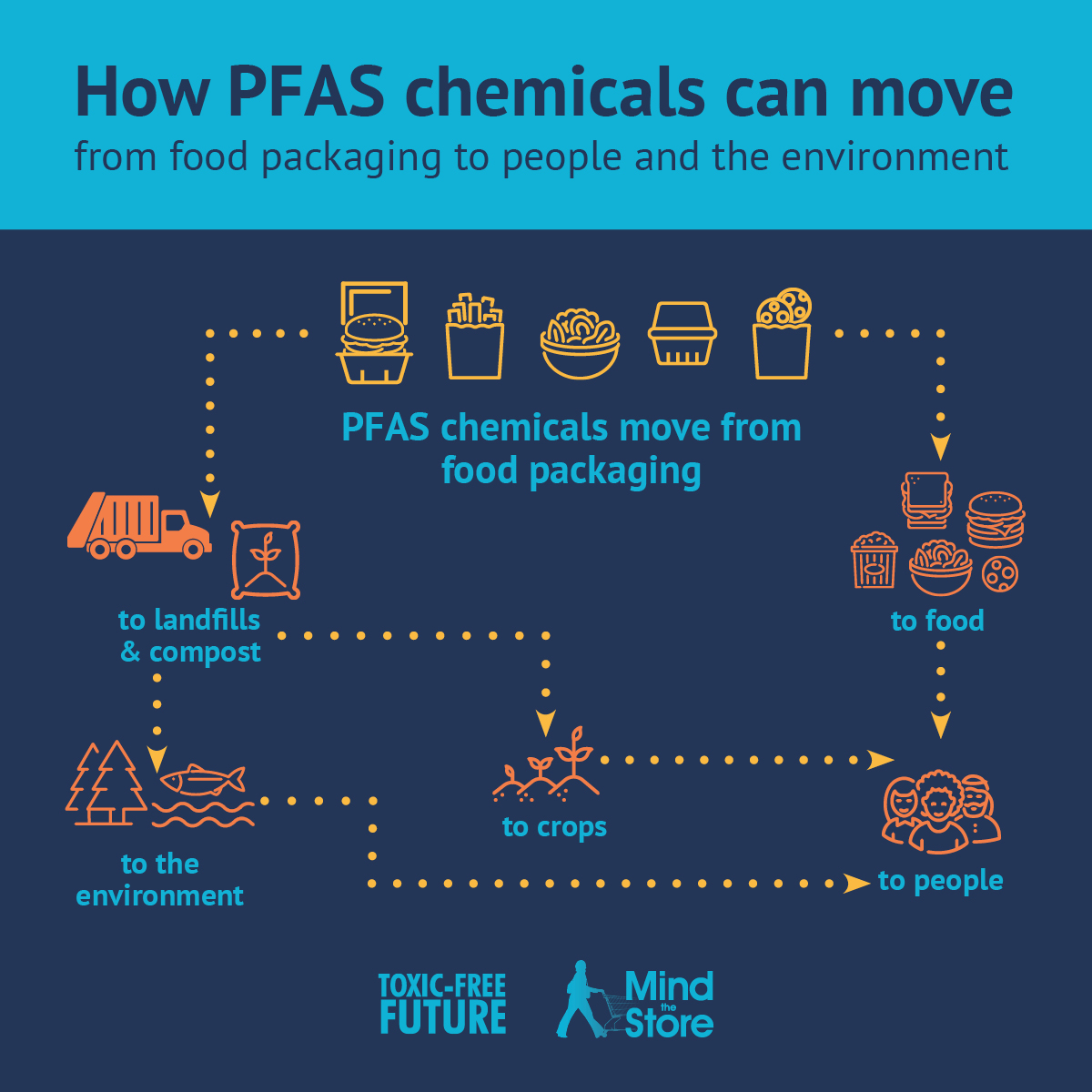 How PFAS move from packaging to people and environment.jpg