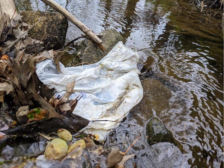 Plastic bag near a stream