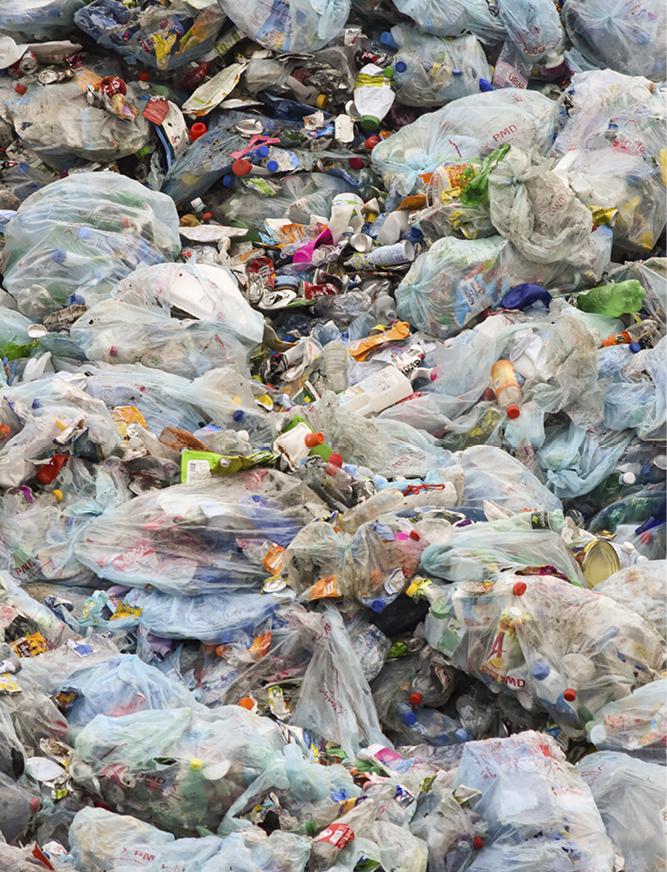 NJ_Plastic_Trash Emily Scott