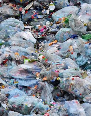 ReThink Disposable_NJ_PlasticBags_Image from NJ Summer newsletter 2018.jpg