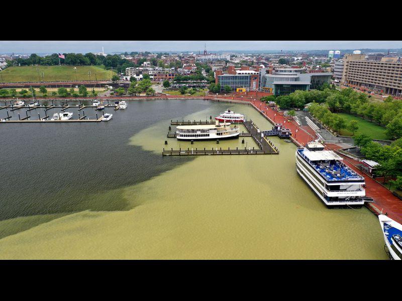 Sediment plume in Baltimore's Inner Harbor. Photo credit: Baltimore Sun.