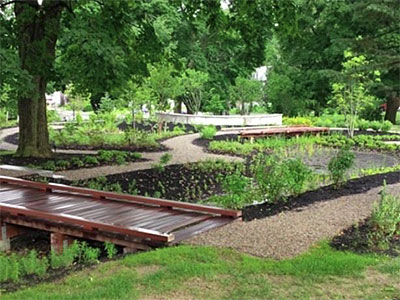 Bioretention_Rhode Island_Photo courtesy of  Providence College