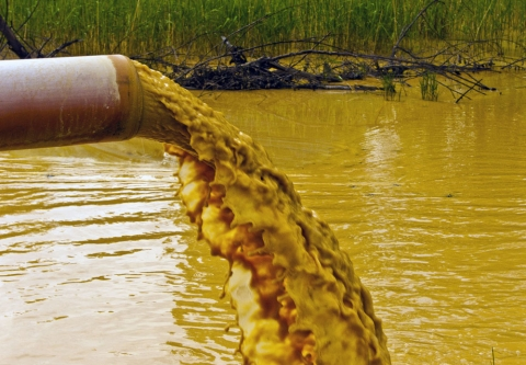 Nasty Brown liquid discharged from a pipe. Photo credit: Dragana Gerasimoski / Shutterstock