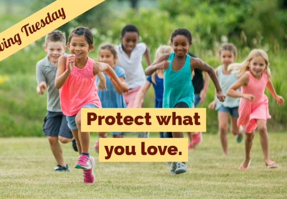 On Giving Tuesday, protect what you love - donate now!