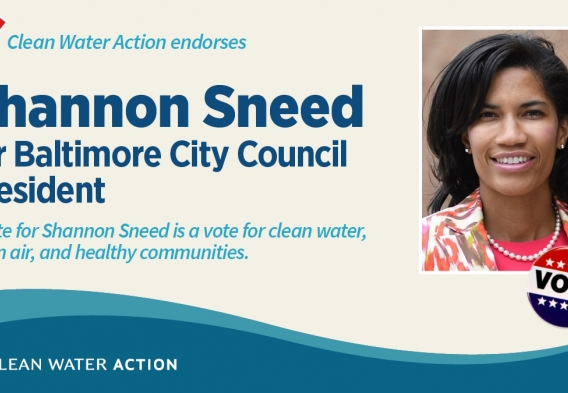Shannon Sneed for Baltimore City Council President