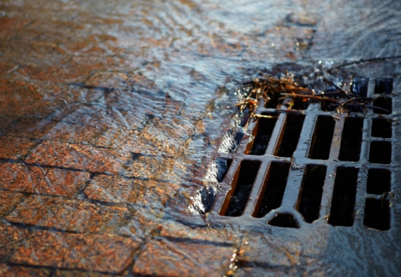 Street drain, stormwater runoff. Photo credit: Abramov Timur / Shutterstock