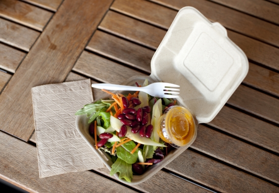 lunch in a disposable container