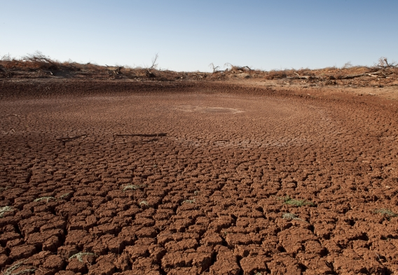 dry cracked soil due to drought in Texas