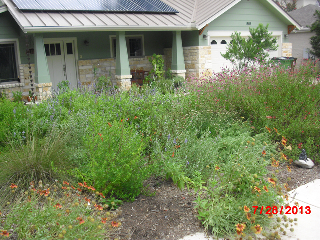 Xeriscape Cottage example #1