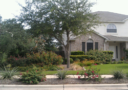 Xeriscape Cottage example #4